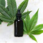 CBDと大麻の違い