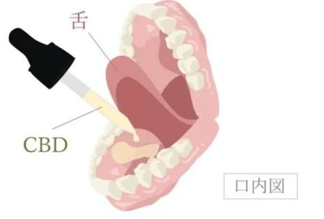 CBDオイルの使い方の説明図